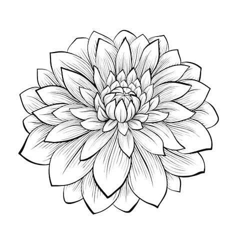 Fancy Goldfish Amigurumi – 코바늘 금붕어 인형